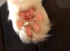 paw_bear_by_tigon